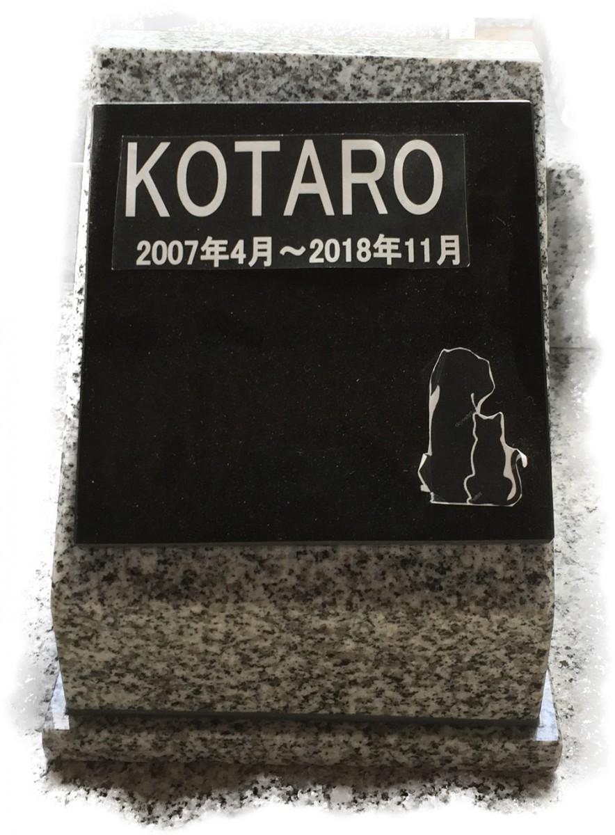 kotaro-NANBUTSU